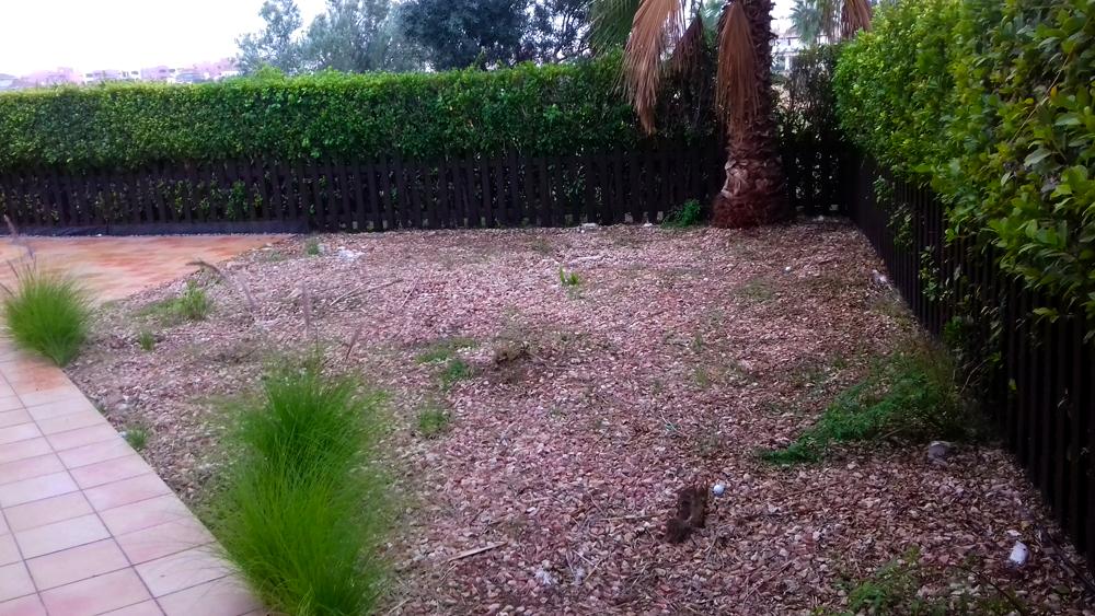Como decorar un jardin sin cesped para las terrazas for Jardines sin cesped